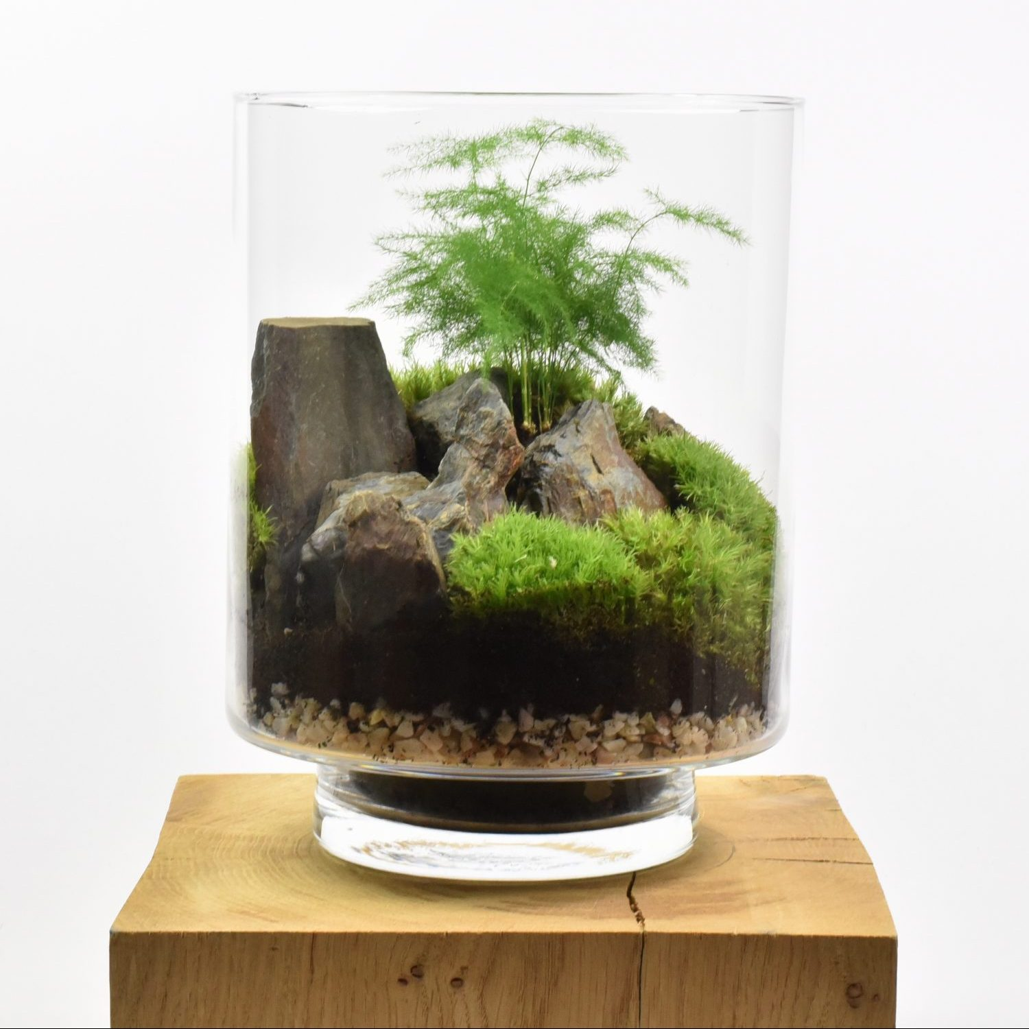 le terrarium original en kit faire soi m me par yamayama. Black Bedroom Furniture Sets. Home Design Ideas