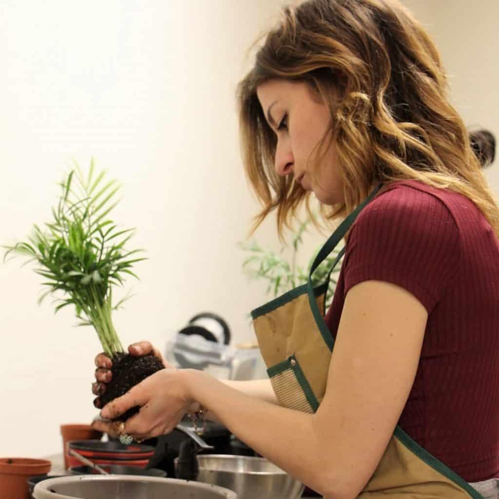idée cadeau fabriquer son kokedama végétal