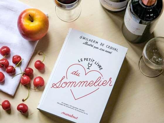 350 pages de conseils pour les fans de vignobles