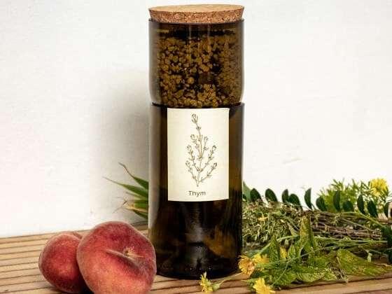Une bouteille de vin coupée où faire pousser ses plantes aromatiques