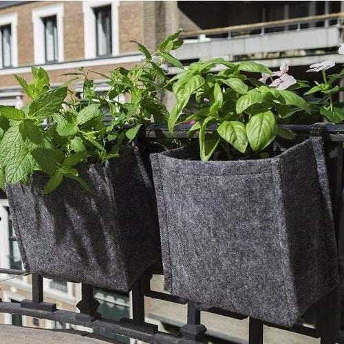 Balconnières pour plantes aromatiques