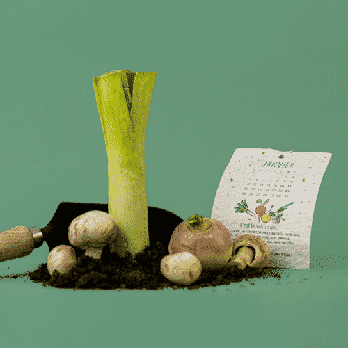 Calendrier à planter