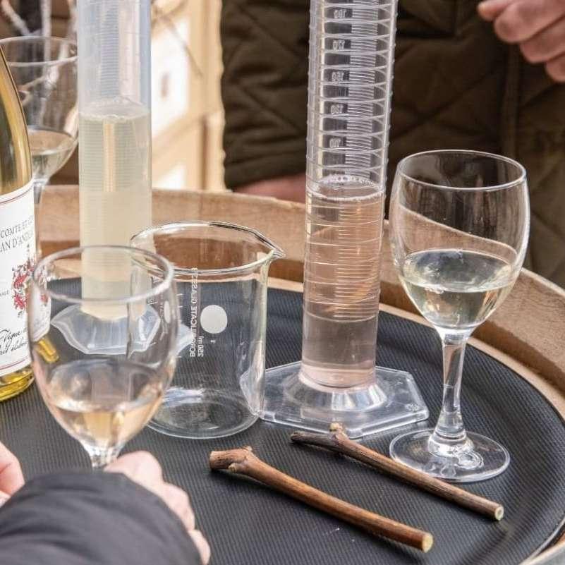 Visitez un lieu atypique et familial dédié à la science du vin sans quitter Paris