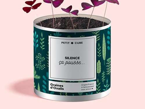Créez votre plante personnalisée